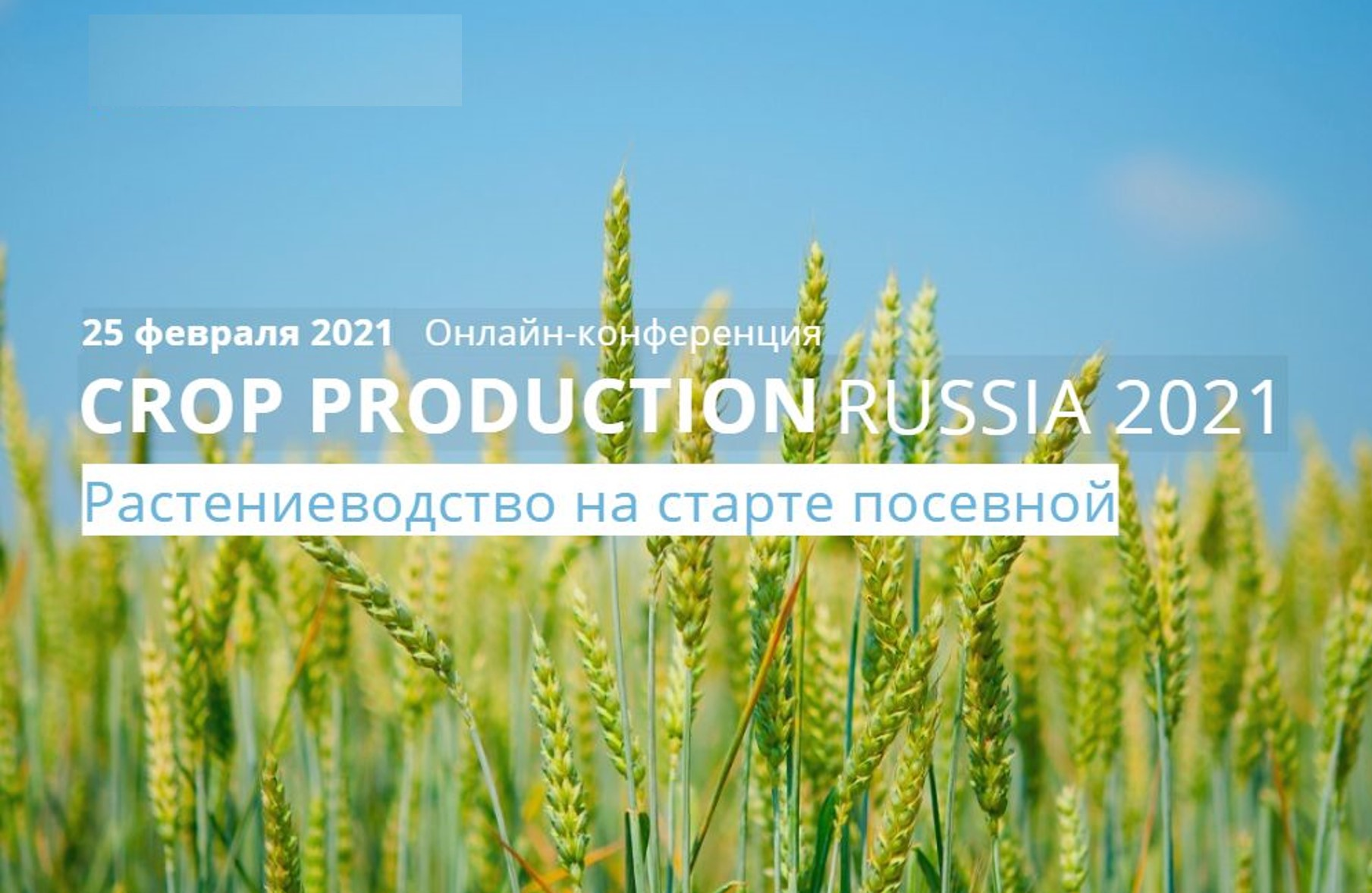 CROP PRODUCTION RUSSIA 2021: «Растениеводство на старте посевной»